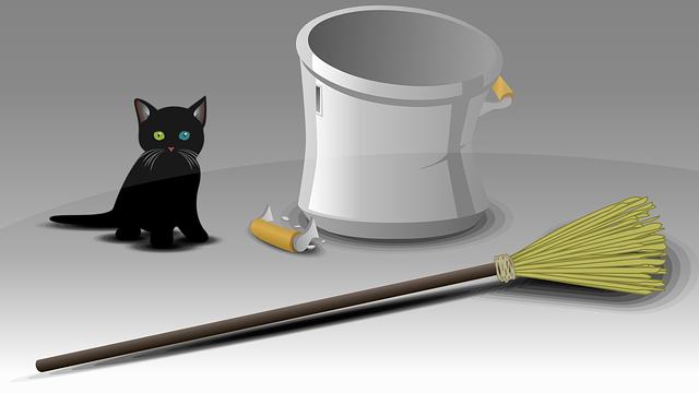 迷信 黒猫 ほうき バケツ
