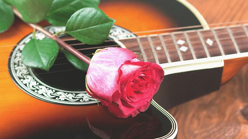 バラとアコースティックギター